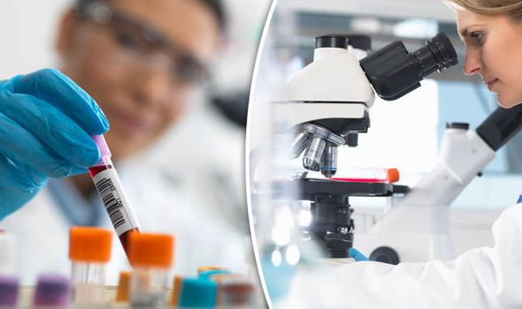 You Can See More: New generation cancer drug 'holds hope for HIV cure' research has shown