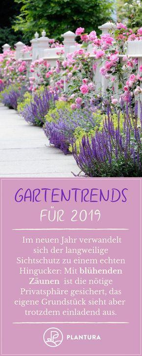 Gartentrends 2019: Unsere Top 10 für Ihren Garten – Bärbel Grahner
