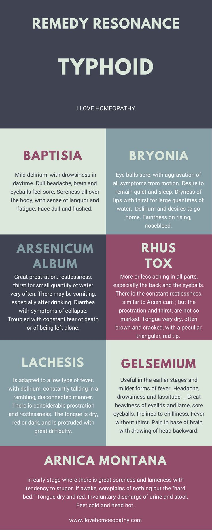 1419 best Homeopathy images on Pinterest | Homeopathic remedies ...