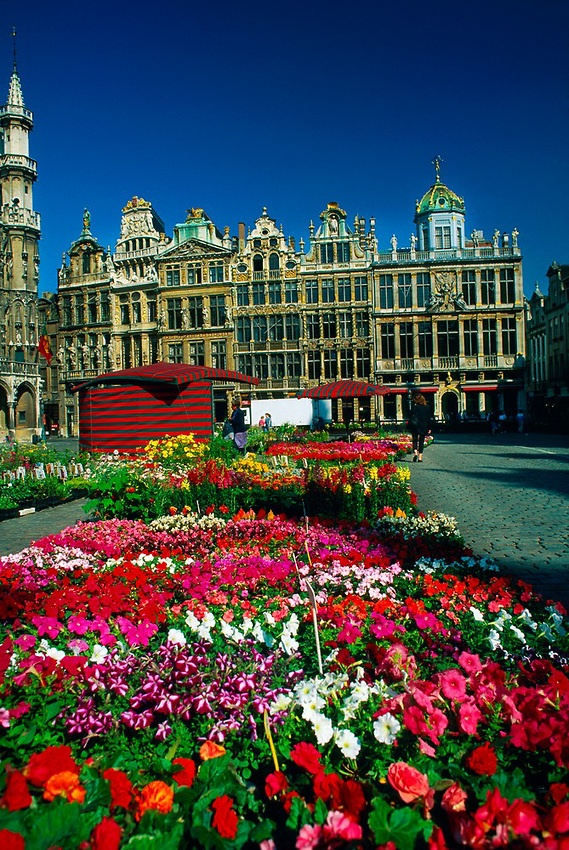 Flower Market, Grand Place, Brussels, Belgium