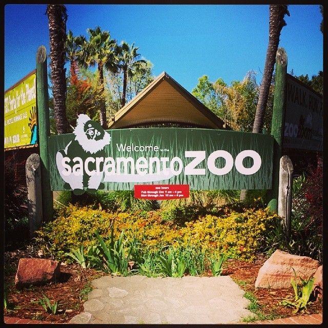 Sacramento Zoo in Sacramento, CA