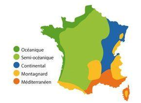 Carte de France des semis et de la plantation des légumes au potager en fonction de la zone climatique - Francès - Rustica