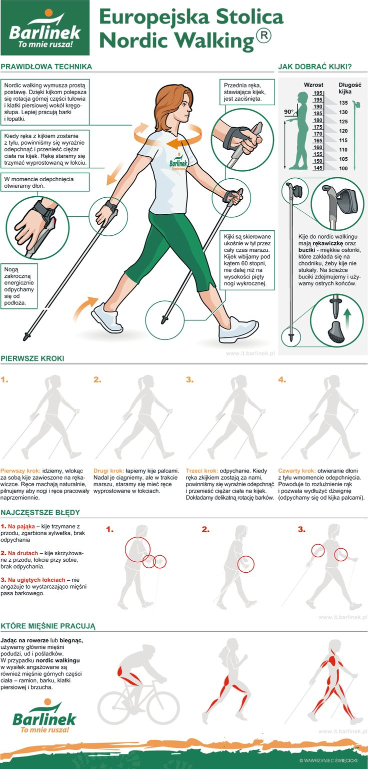 Nordic-walking- infographic