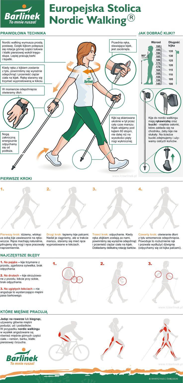 Nordic-walking- infographic