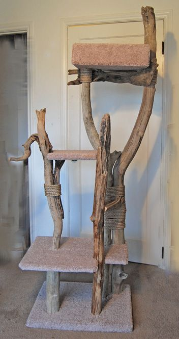 I see a beach trip in my future...cat tree made out of driftwood