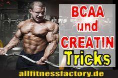 BCAA und Creatin Doppelpack für ultimative Muskelmasse Wie ergänzen sich BCAA und Creatin? Wie wird Creatin richtig eingenommen? Welche Wirkung haben BCAA?