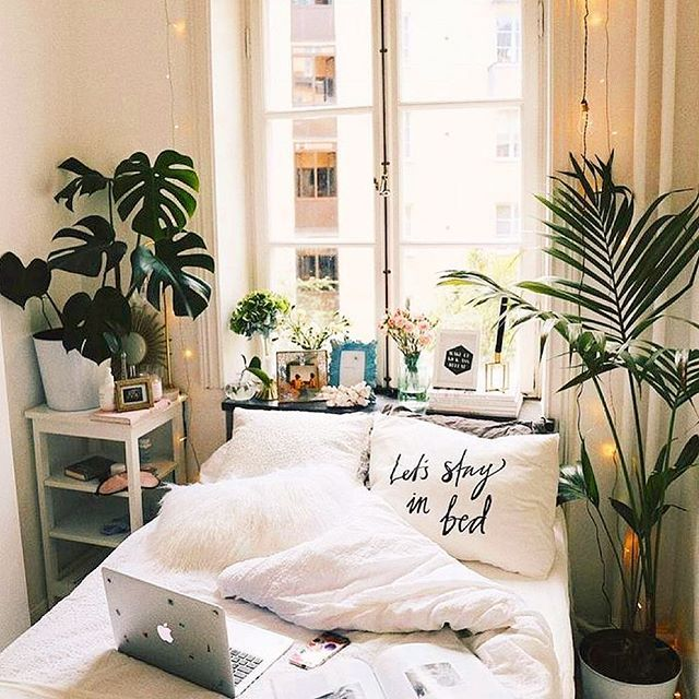 131 Best Plants :: Bedroom Images On Pinterest