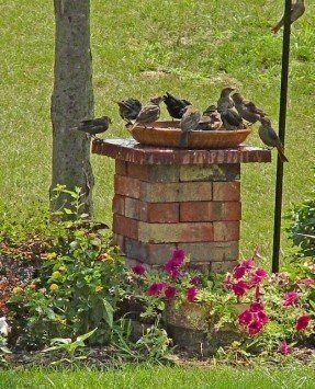 Garden Ideas With Bricks best 25+ old bricks ideas on pinterest   brick path, brick garden
