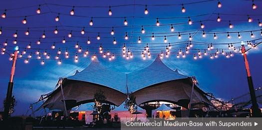 PartyLights.com | Commercial-Grade Medium Base String Lights & Bulbs