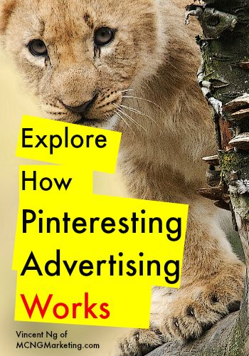 Explore How Pinterest Advertising Works by @mcngmarketing. In this article we explore the two different Pinterest promoted pins, and which one is right for your business.