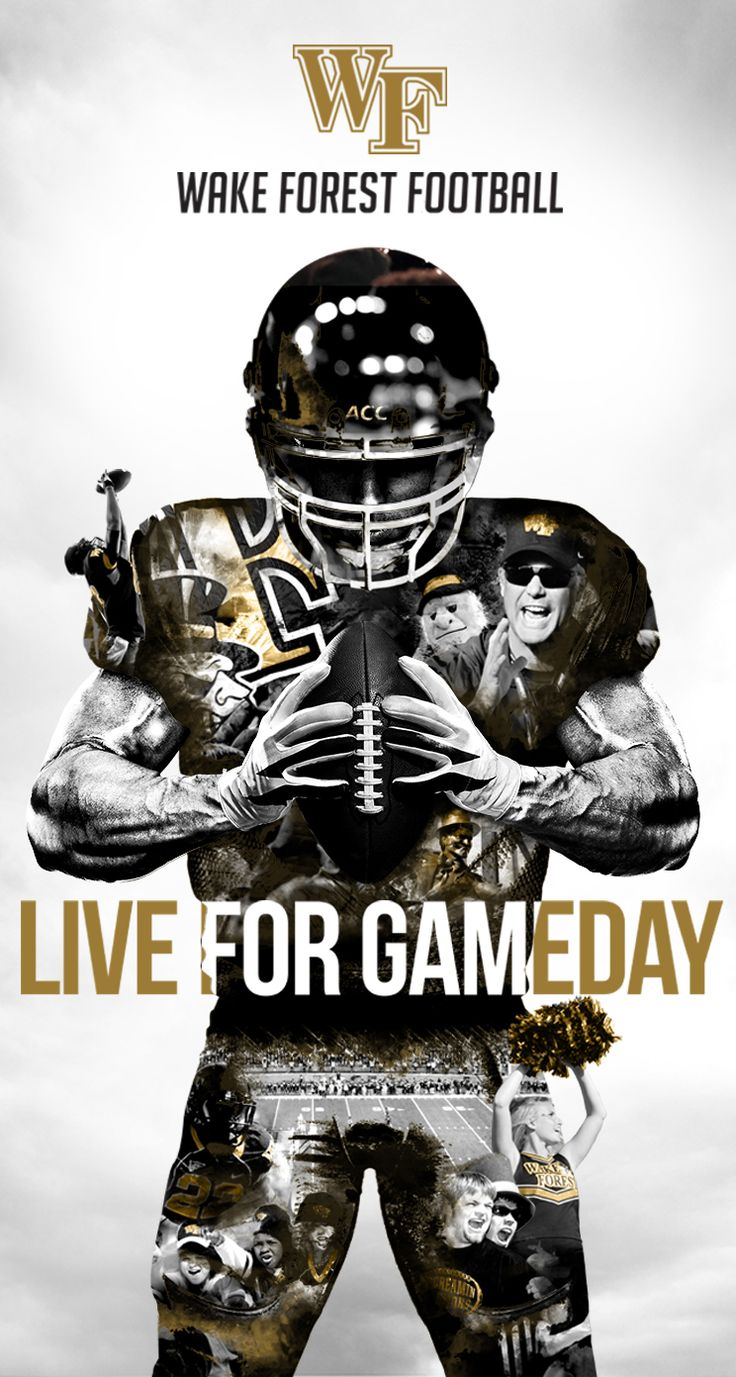 Marketing of sports Wake Forest Football Wake Forest Fans Wake Forest's Campus and surrounding area Ticket Price                                                                                                                                                     More