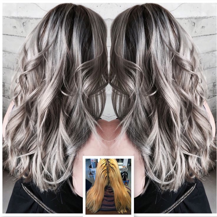 gray hair   Modern Salon