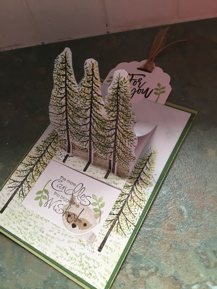 Beautiful card using a few different stamp sets