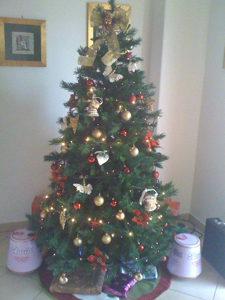 Natale 2011 e biscotti!