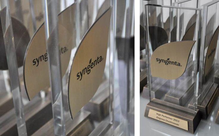 Nasza firma zaprojektowała oraz wykonała statuetki na najważniejszą dla firmy Syngenta uroczystość. Podstawa oraz logo firmy wykonaliśmy z mosiądzu natomiast całość uzupełnia element szklany, który nadaje lekkości całej formie. Statuetka oparta na prostym projekcie, ale przy tym bardzo elegancka.