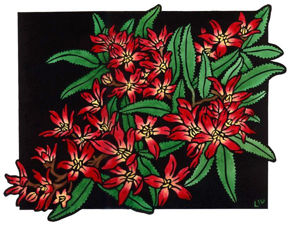 Christmas Bush Design - Limited Edition Handpainted Linocuts by Lynette Weir
