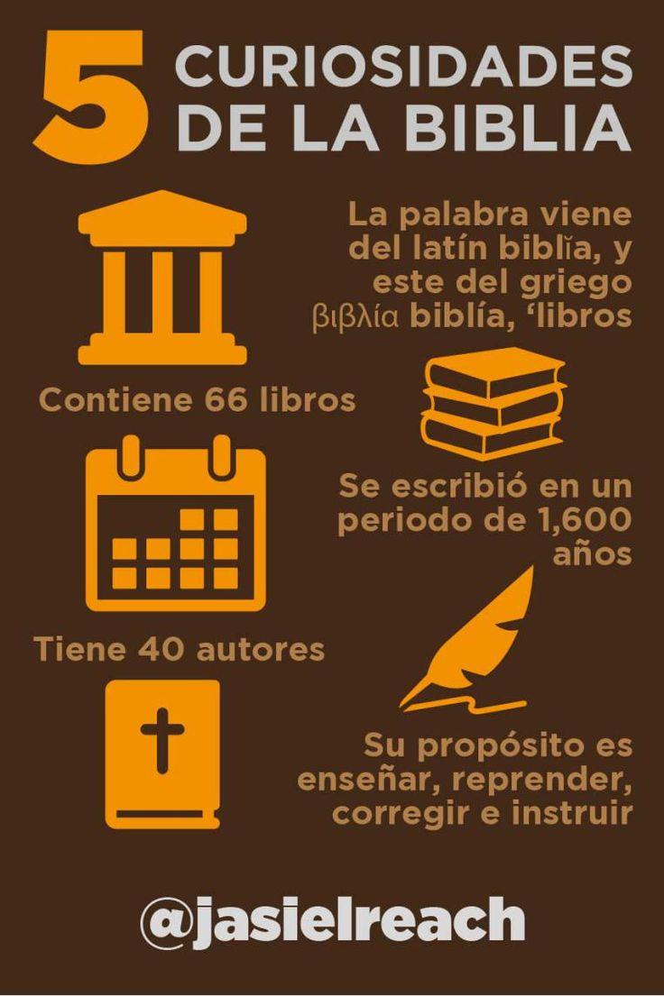 6 curiosidades de la Biblia infografico #infographic # ...