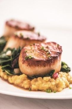 Maple-bourbon-glazed scallops with butternut squash and Swiss chard