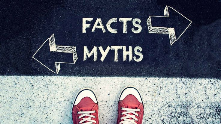 When it seems as though politicians and others can't agree on basic facts, it's more important than ever to encourage our students to seek truth.