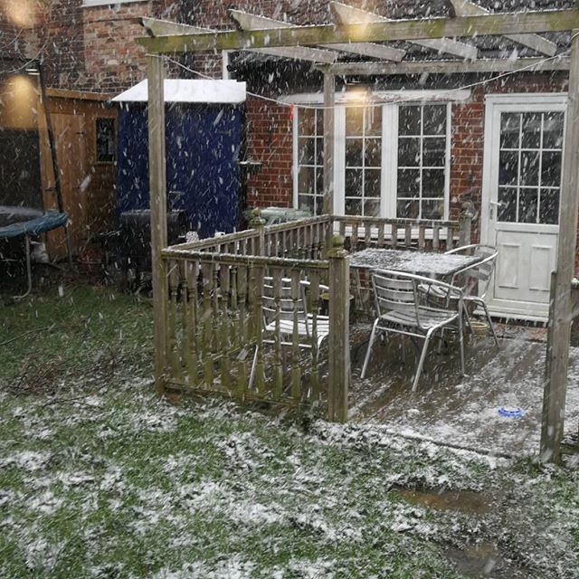 It's getting serious now, I might not be able to make it back from the garden office to the house for lunch :-) #uksnow