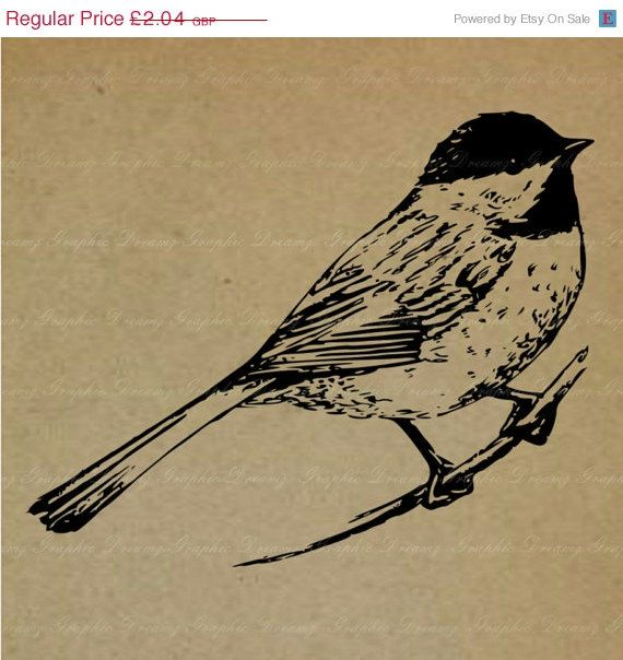70 OFF SALE Black Capped Chickadee 88KM Digital by GraphicDreamz