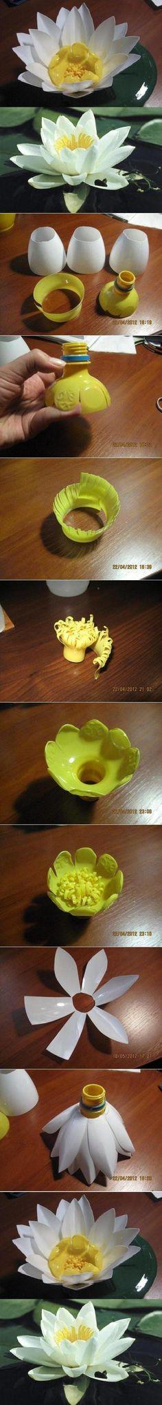 Flor de loto reciclando