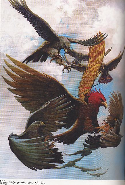 Wing Rider Battle With War Shrikes