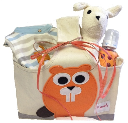 12 best organic baby gift baskets images on pinterest baby gift organic baby gift basket boys nb 9months at our green house negle Choice Image