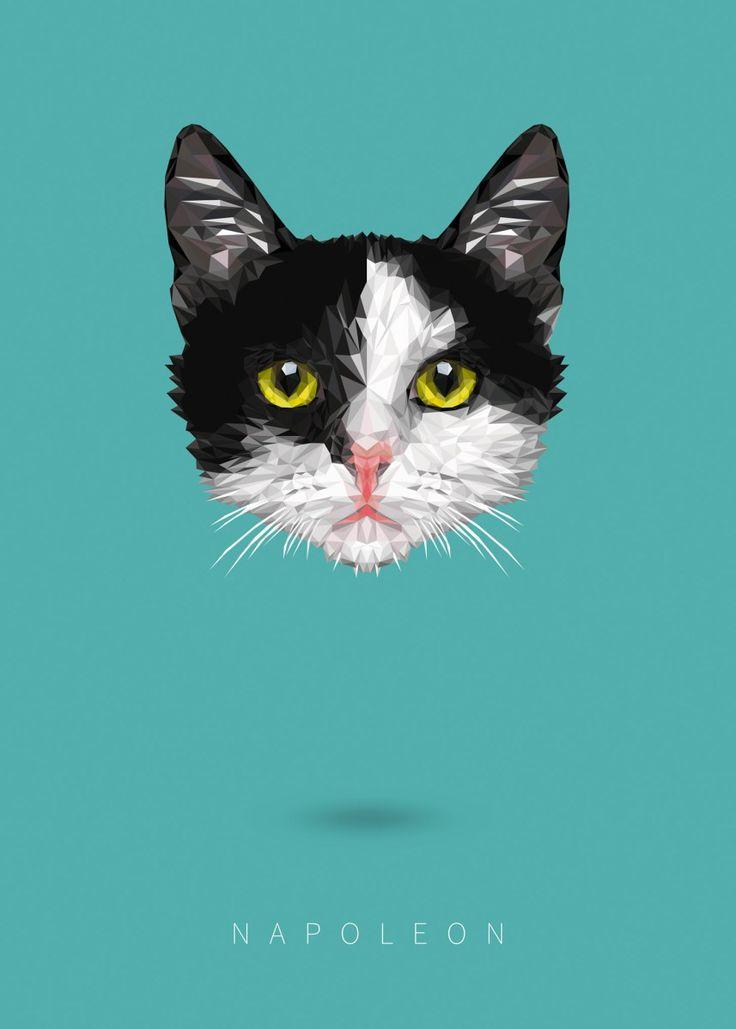Poster polygon cat  hexagon images cats  cat portrait
