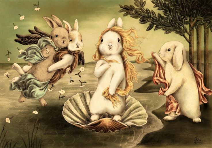 La venus de lapin