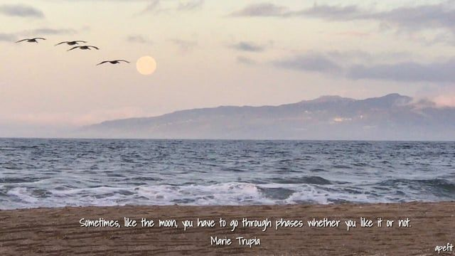 February 11, 2017  Sometimes, like the moon,  you have to go through phases whether you like it or not.   Marie Trupia