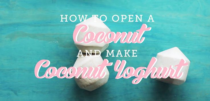 How to Open a Coconut (and Make Coconut Yoghurt!) - Move Nourish Believe