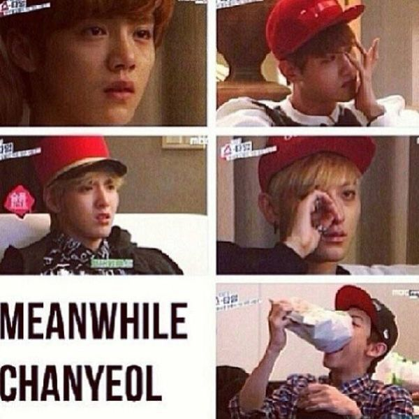 Funny Memes Xdddd : Best images about exo showtime on pinterest wolves