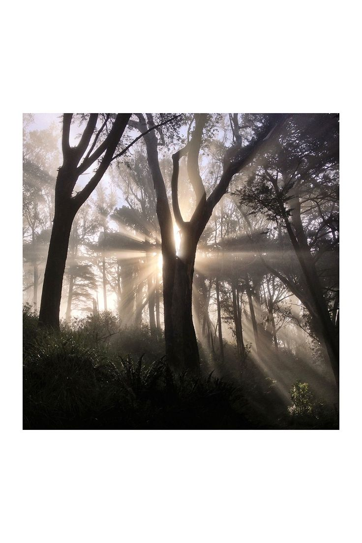 """92 best images about Light on Pinterest 