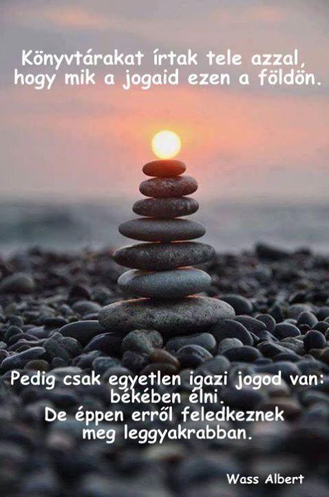 Wass Albert idézete a békéről. A kép forrása: Sokszínű Vidék
