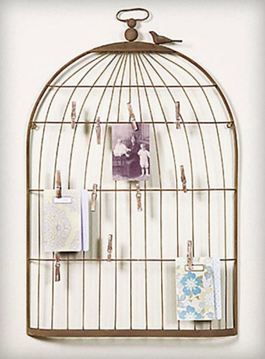 1000 Images About Cages On Pinterest The Birds Bird