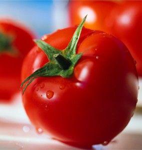Manfaat Tomat Untuk Kesehatan,- Tomat ternyata memiliki banyak manfaat untuk kesehatan tubuh kita. Lalu apa saja Kandungan nutrisi dalam tomat ? Satu sajian tomat mentah (sekitar 150 gram) mengandung vitamin A, C, K, folat, dan kalium. Tomat...