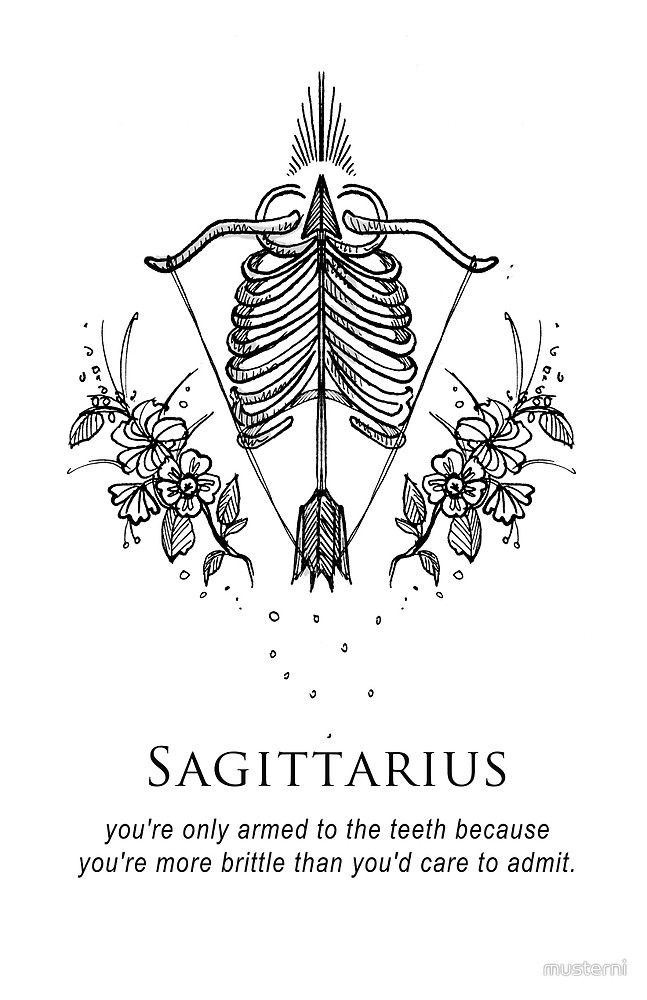 Sagittairus - Shitty Horoscopes Book VI: After the Fall by musterni