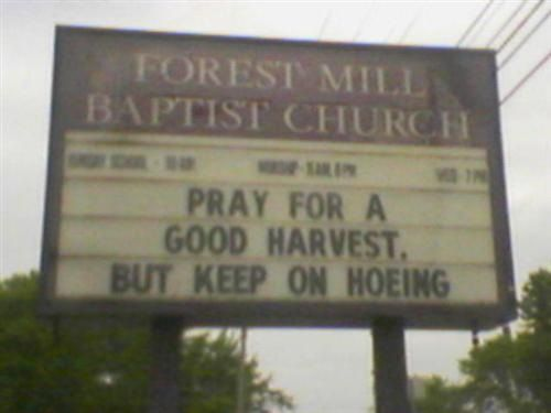Church Sign Quotes Amusing 41 Best Quotes Funny Church Signs Images On Pinterest  Funny