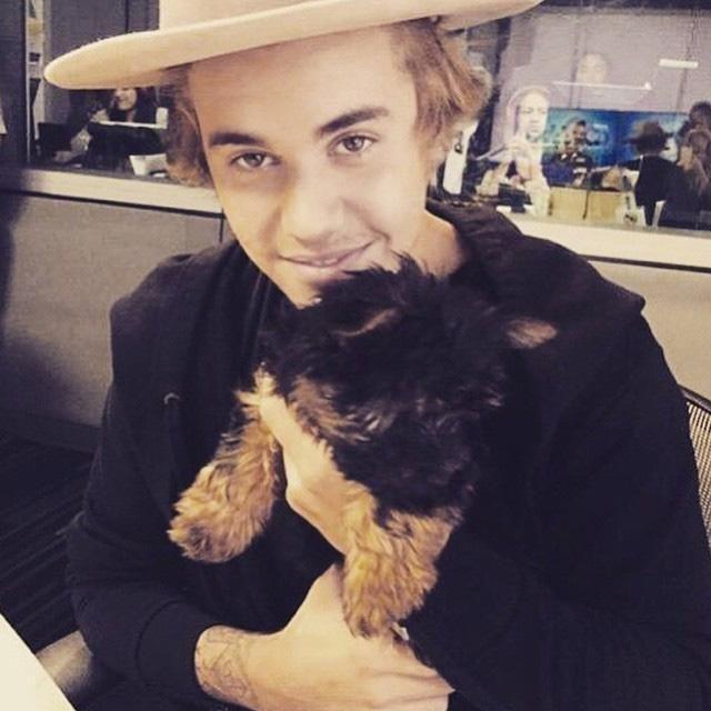 Qué bonito está el perrito me encanto y Justin Bieber no sabia que le gustaban los perros a mí me encantan