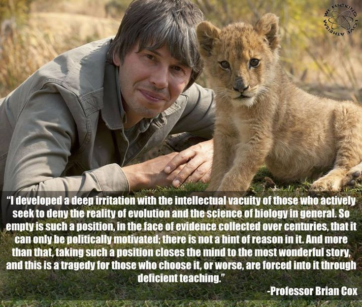 Prof. Brian Cox quote about people who actively and willfully remain ignorant in the face of centuries' worth of knowledge.
