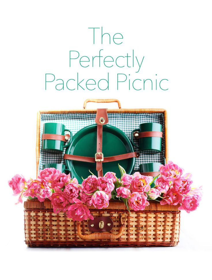 Picnic Basket Spotlight : The perfectly packed picnic picnics and tips
