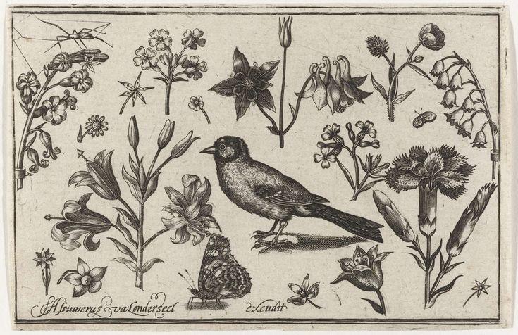 Bloemen, vlinder en een vogel, Nicolaes de Bruyn, 1594