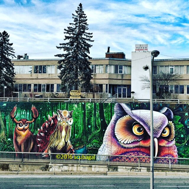"""The moping #owl does to the #moon complain..."" ~ Thomas Gray 