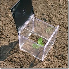 little greenhouse from cd cases