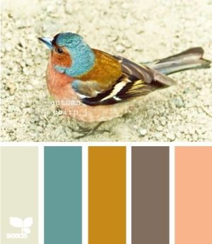 Me: fun color inspiration for any roomNot a fan of the peach, but I like the others.