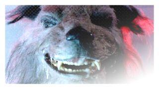 Howling III (1987) http://terror.ca/movie/tt0093227