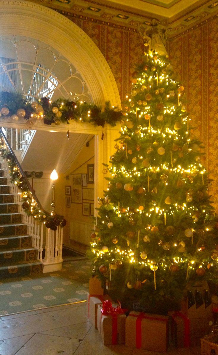 Longueville Christmas Tree 2014
