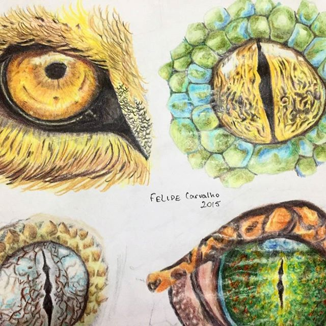 treinando olhos #eyes #desenho #art #lapisdecor