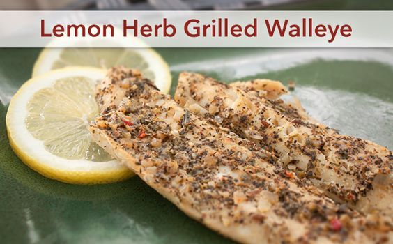 1000 ideas about grilled walleye on pinterest walleye for Walleye fish recipes